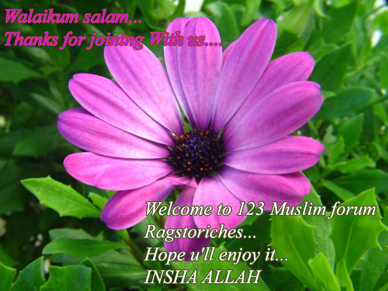 Assalamu alaikum-66-jpg