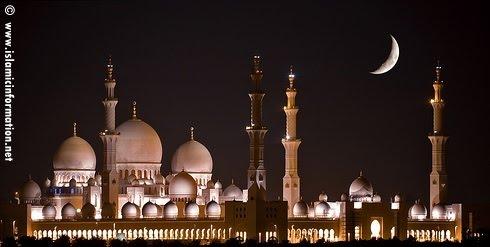 ~~~contest: share ur fav pic of  '' Sheikh Zayed Grand Masjid ''~~~-sheikh_zayed_grand_mosque_07-jpg