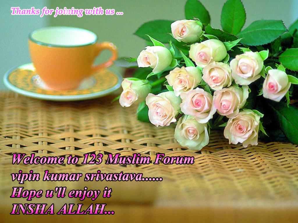 new comer-roses-32-lihaurxk8y-1024x768-jpg