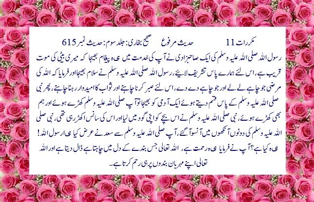 Download Free Quran wa Hadees (with 5 Translaion & Tafseer) Software 3.0-615-ansu-rehmat-jpg