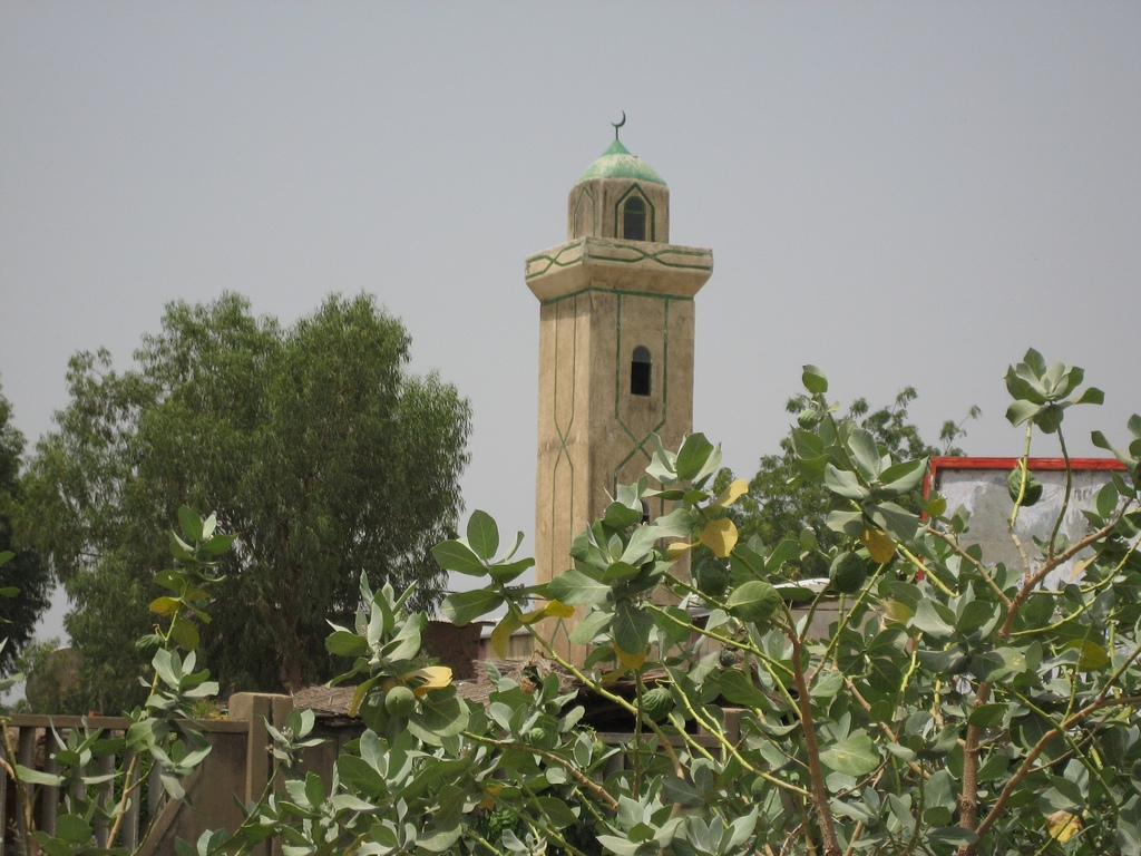 Masjid Around The World-mosque-chad-jpg