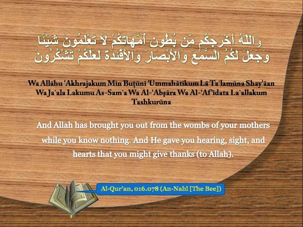 Islamic Quotes ! <<ISLAM—The Greatest Religion >>!-quran-016_078-jpg