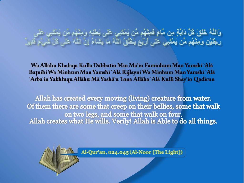 Islamic Quotes ! <<ISLAM—The Greatest Religion >>!-quran-024_045-jpg