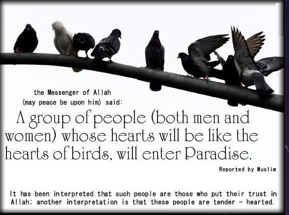 Islamic Quotes ! <<ISLAM—The Greatest Religion >>!-q57-jpg