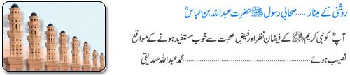 Hazrat Abdullah Bin Abbas Radi ALLAH Taala Anhu-9838_5-21-2010_2-jpg