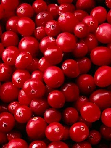 Beauty of RED-2954615270106522538s500x500q85-jpg