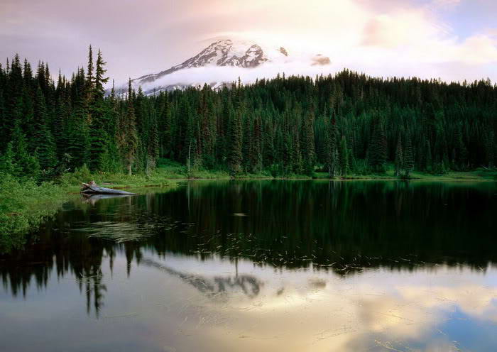 Mindblowing reflection Lake photos-4dda66184be7c1-71315216frogview-gallery-jpg