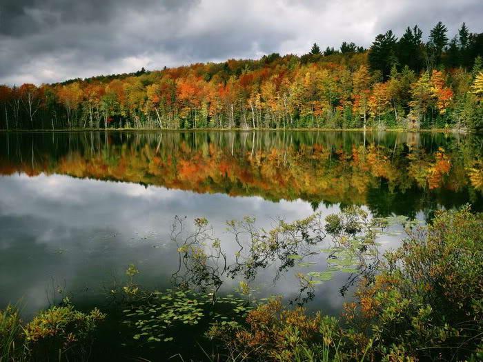 Mindblowing reflection Lake photos-4dda6617bc7f31-04561674frogview-gallery-jpg