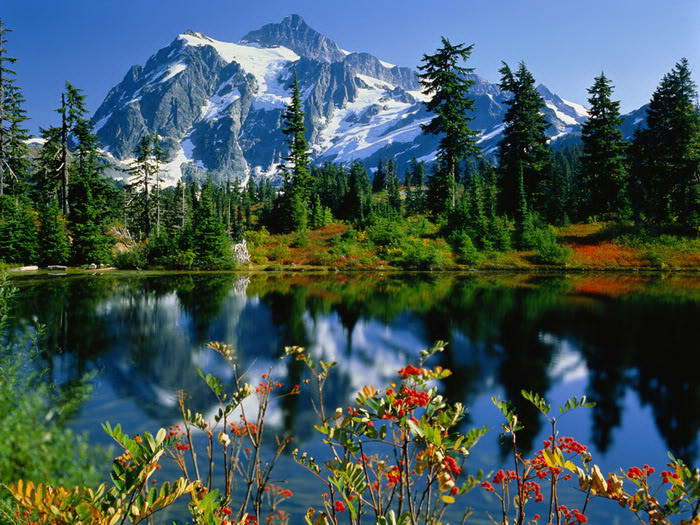 Mindblowing reflection Lake photos-4dda66176dcf78-56777151frogview-gallery-jpg
