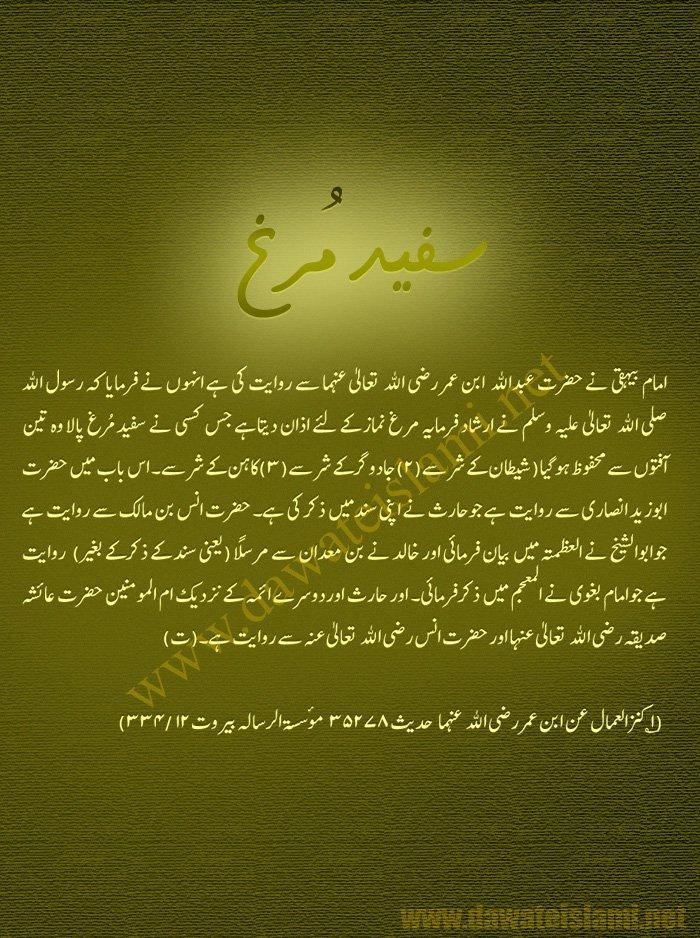 Rajab-Madni Phool-256166_209155952457080_100000880304334_529181_4944267_o-jpg