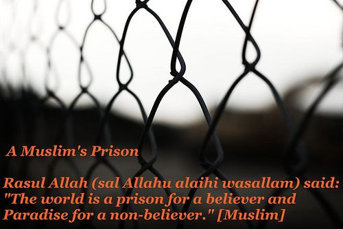 Islamic Quotes ! <<ISLAM—The Greatest Religion >>!-tumblr_l9bcobh0m41qdxa23o1_500-jpg
